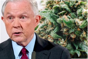 Sessions Admits Feds Can't Effectively Police Marijuana In States