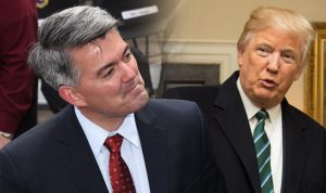 Sen. Corey Gardner Believes Trump 'Will Be True to his Word' on Cannabis Policy