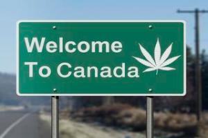 Bill Blair: If pot bill passes by week's end, marijuana will be legal in September