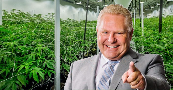 Ontario to sell pot online in fall, in private stores next year