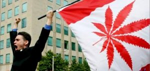 Canadian Senate passes marijuana bill