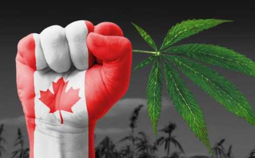 Here's how the provinces are planning to regulate marijuana
