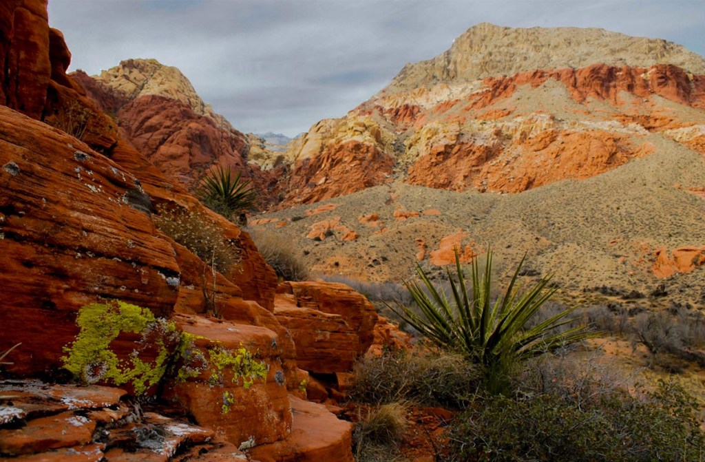 Day Trips from Las Vegas : adventures, hiking day trips, locals getaways
