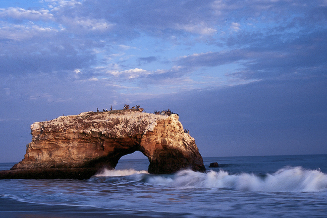 Santa Cruz is a small town but there is a lot to do, especially if you love nature and the ocean. But there are also plenty of things to entertain foodies and shoppers as well. Let's explore this coastal California town!