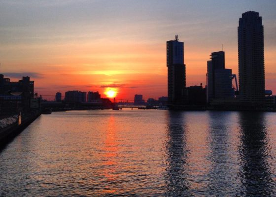 Fun Things To Do in Rotterdam