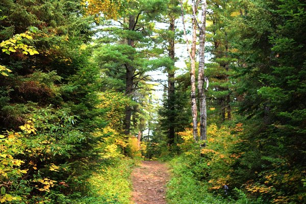 Hiking the Superior Hiking Trail in Minnesota
