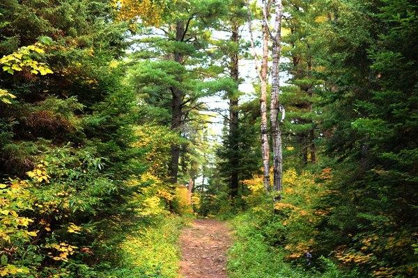 Hiking the Superior Hiking Trail in Minnesota