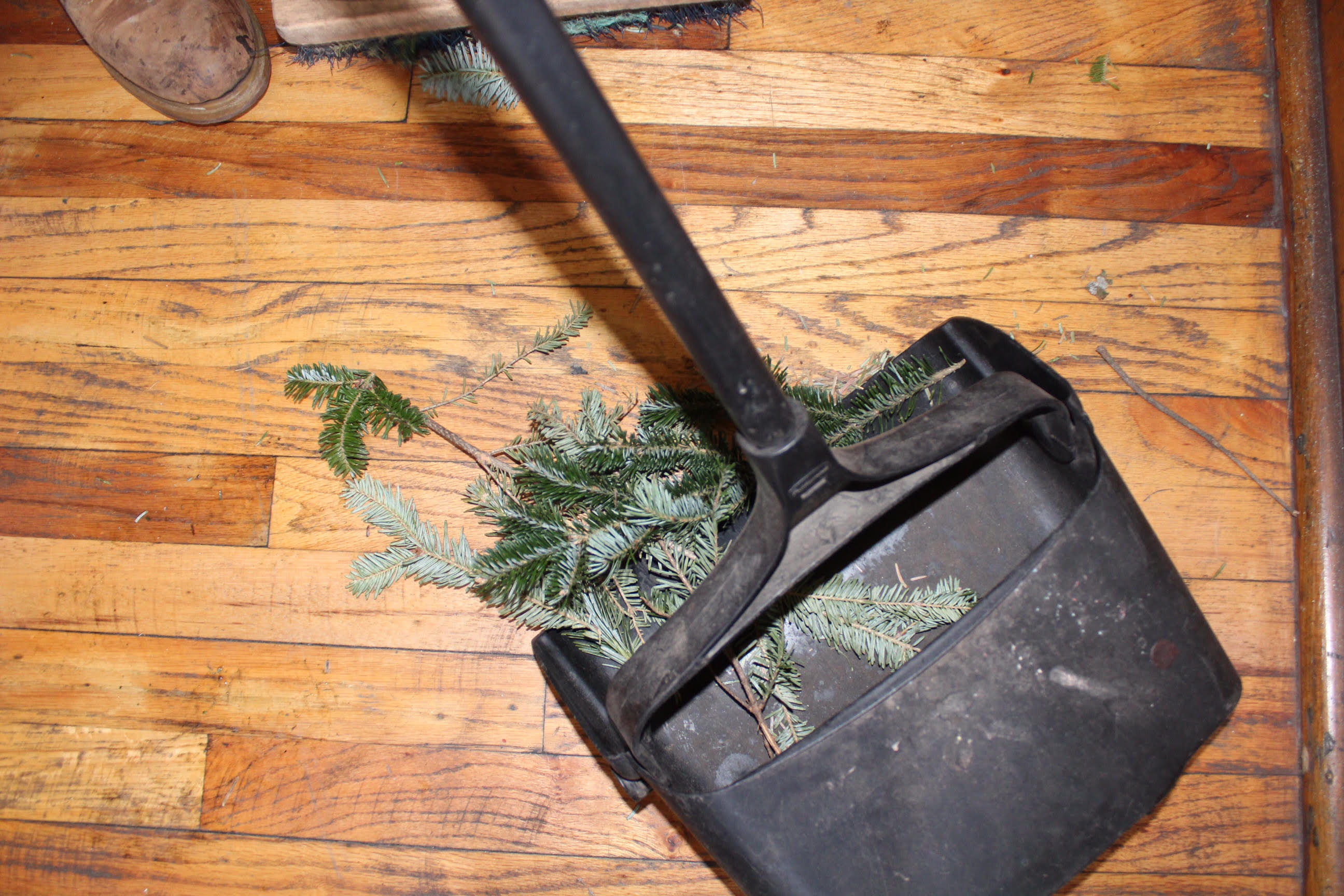 christmas tree removals in Brooklyn