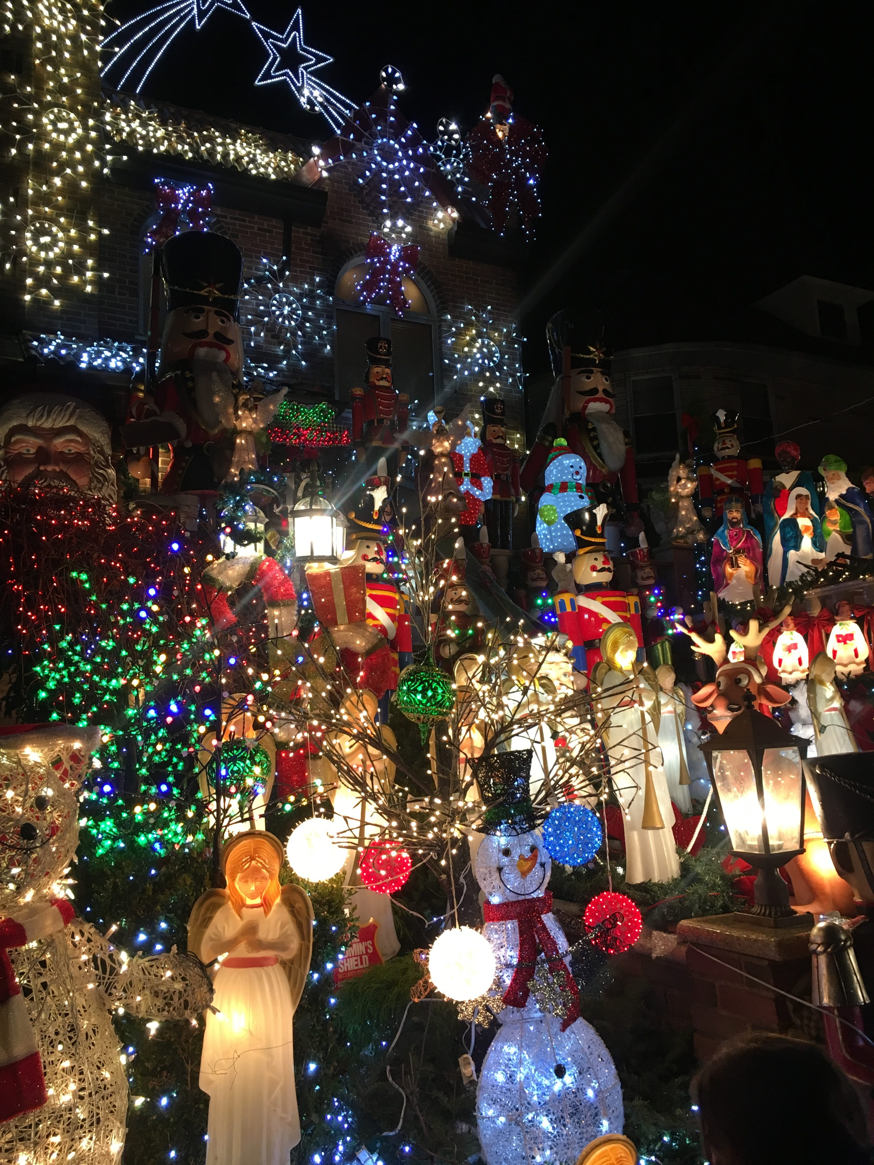 Holiday Magic in Dyker Heights