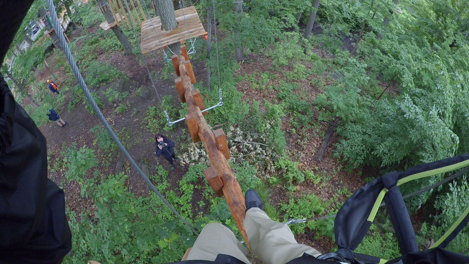 climbing at Bronx Zoo Treetop Adventure