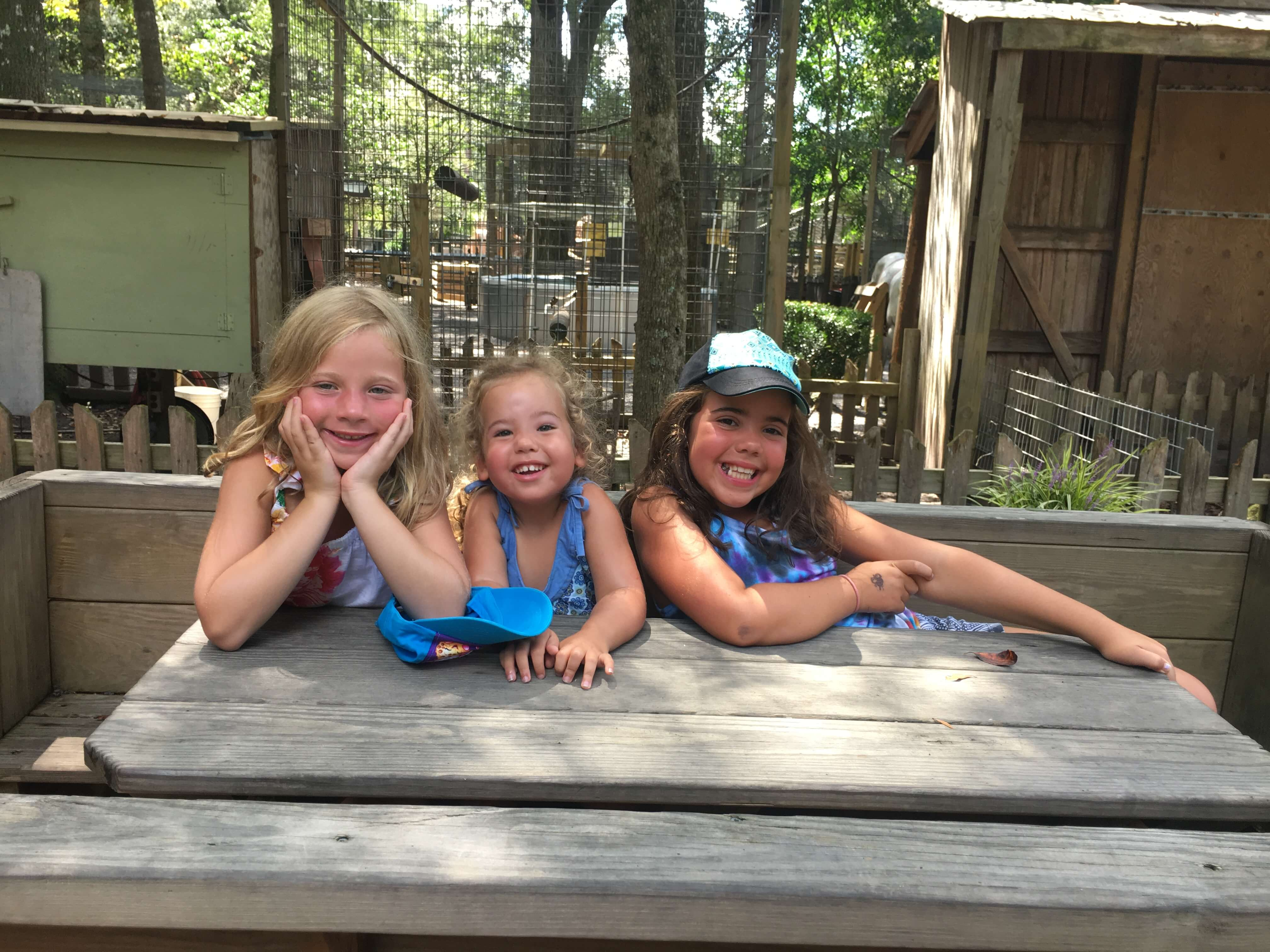 We had a blast in charleston with kids! Check out some of our favorite things to do in and around Charleston over the summer.