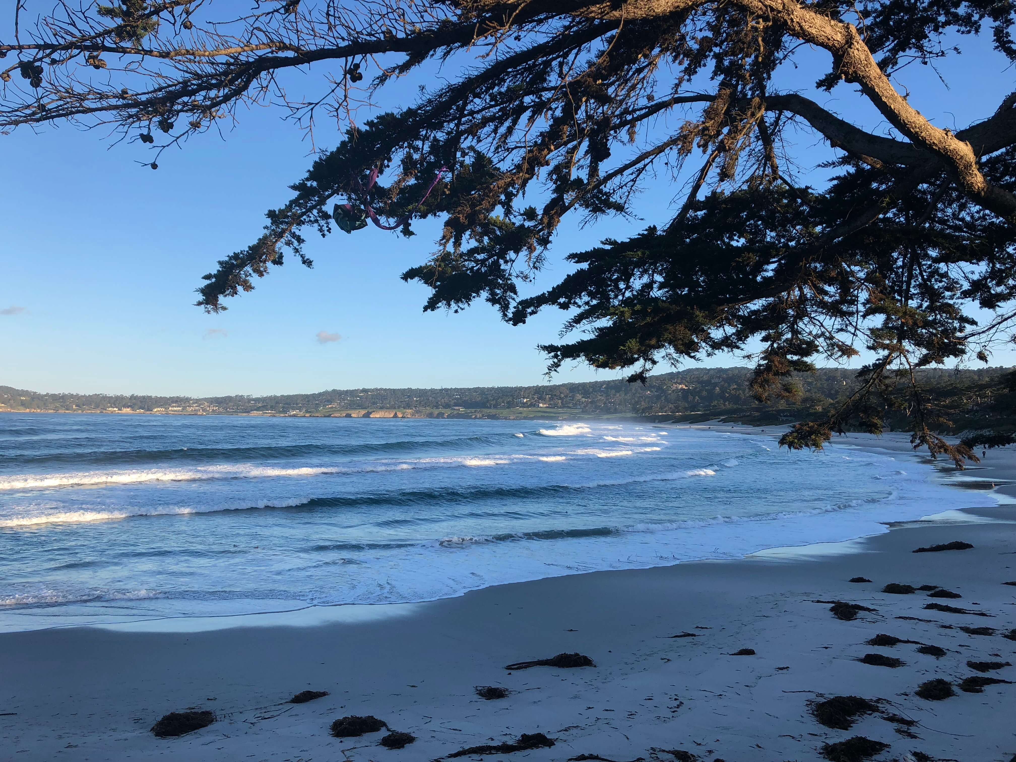 beach in carmel by the sea that's close to the Hofsas House Hotel