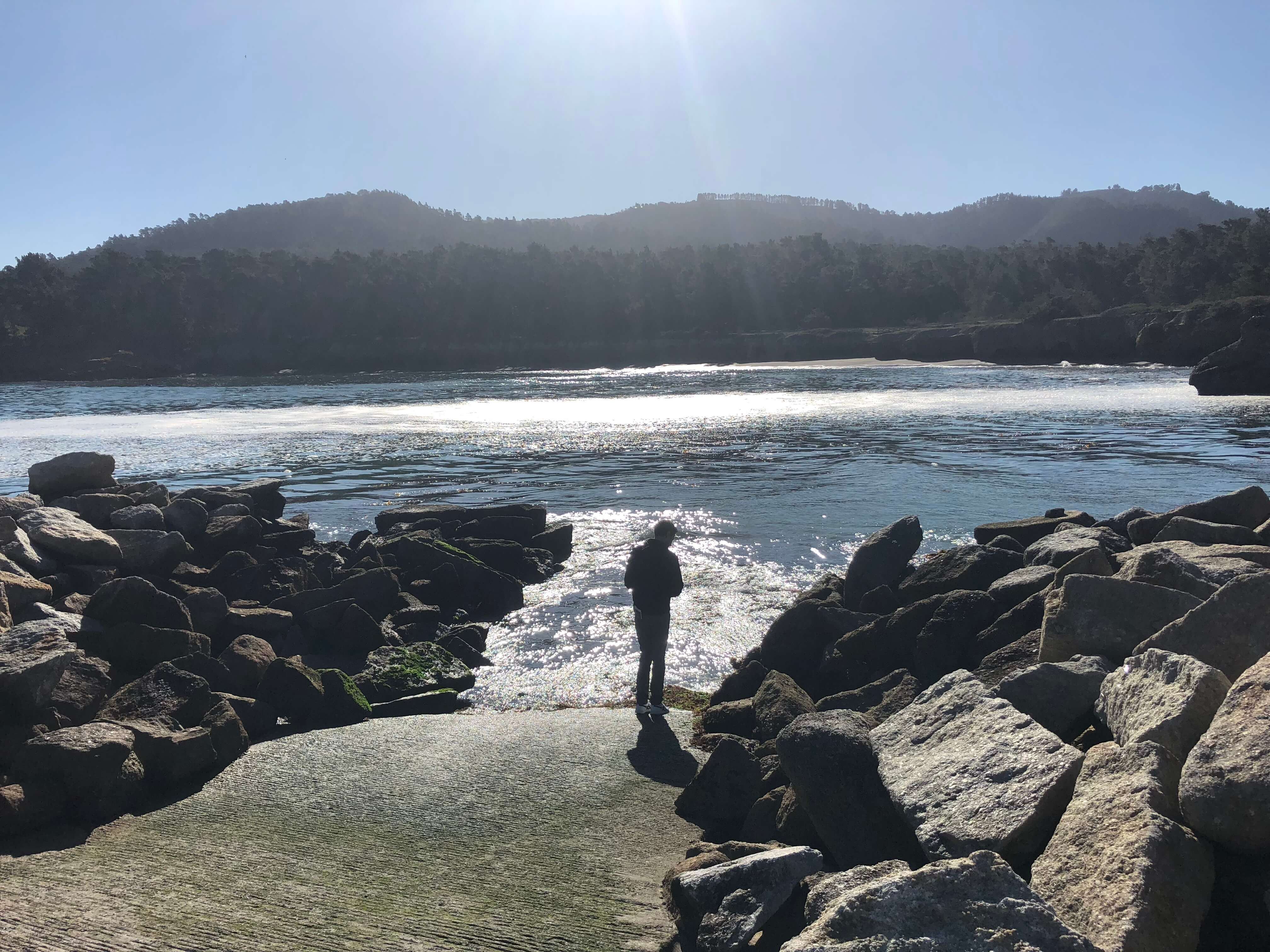 carmel-by-the-sea point lobos state reserve