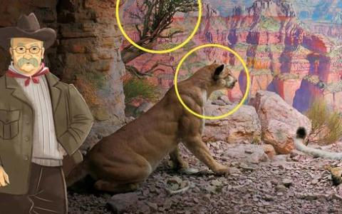 AMNH Launches New Virtual Field Trips for Online Learning