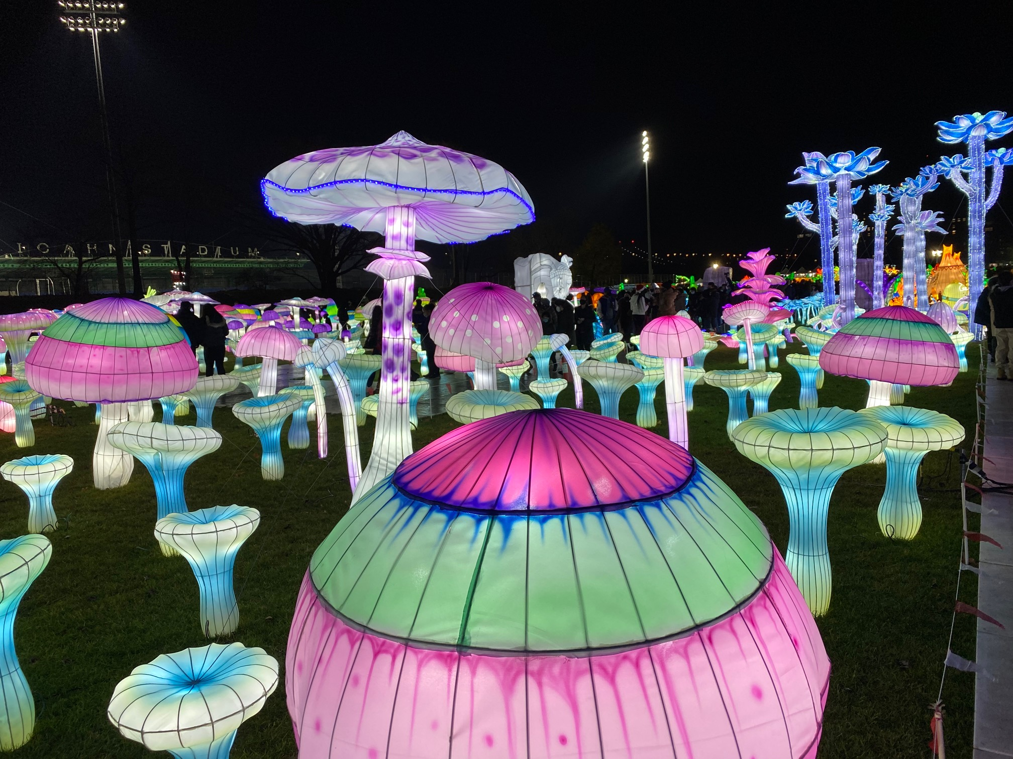 Enter the Magical World of the LuminoCity Festival
