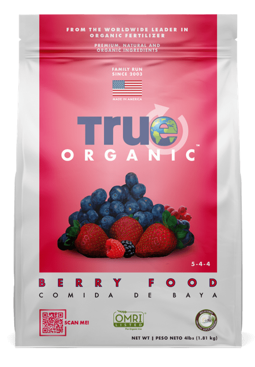 Interview with True Organic