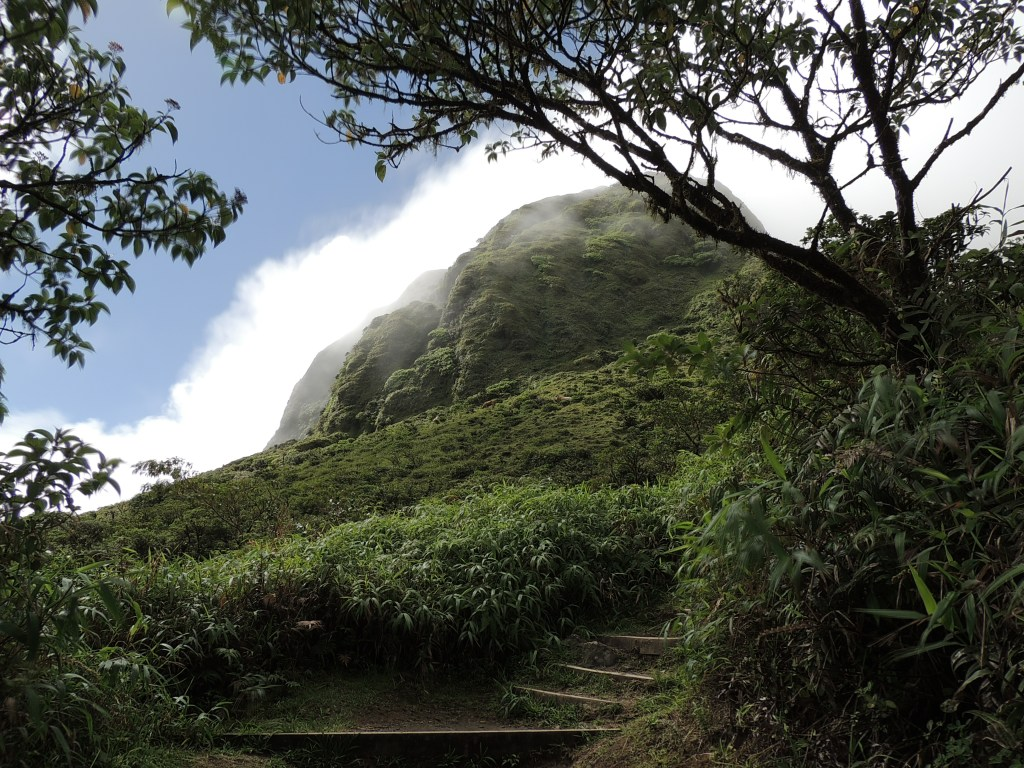 Hiking Mont Pelée in Martinique // TheWeekendJetsetter.com