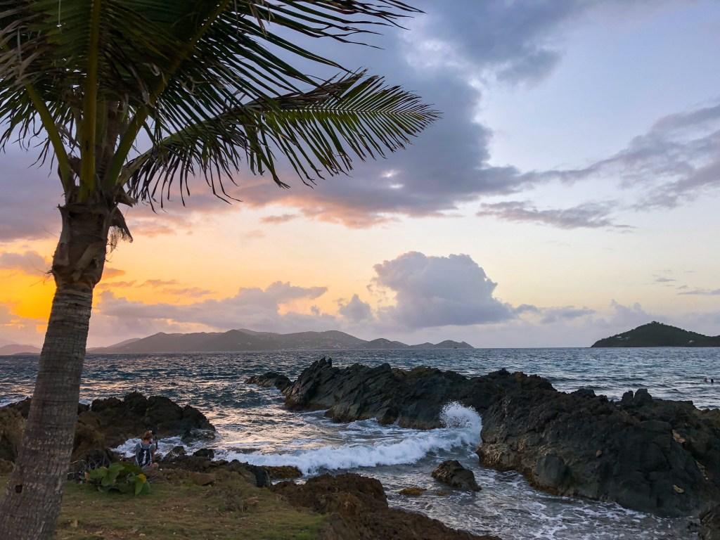 Palm Tree Sunrise | TheWeekendJetsetter.com