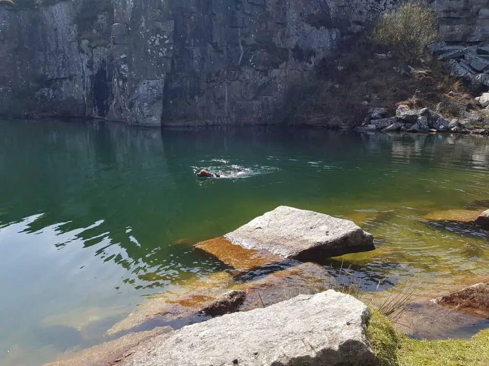 Una Swimming in the lake at Gold Diggings Quarry