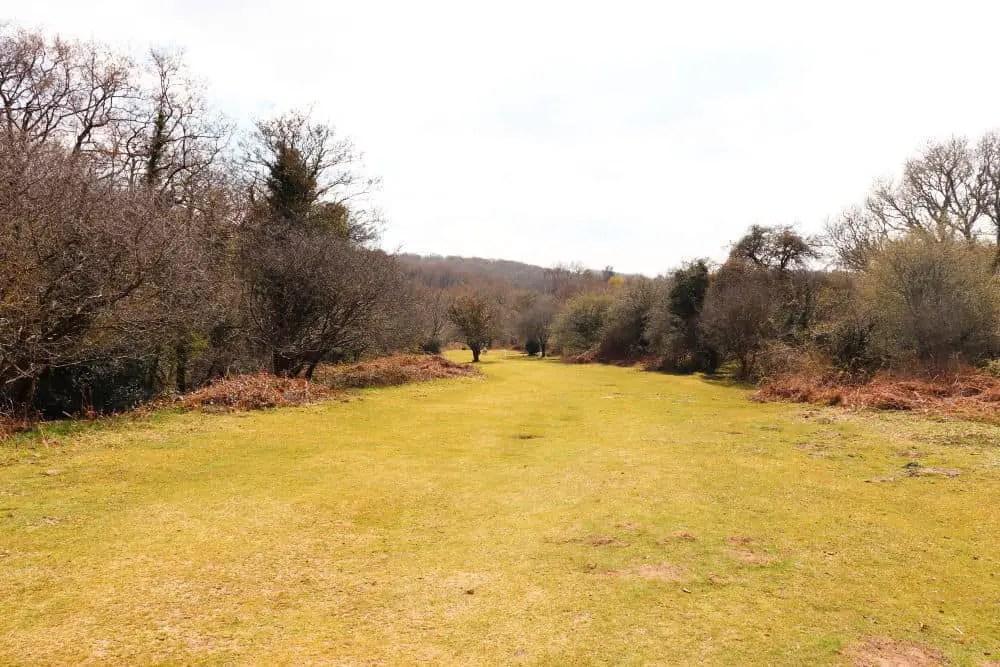 Spitchwick Common, Dartmoor