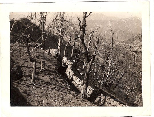 This one among one of the many photos, depicting a mountainside trench, Al snapped with his 35 mm camera for his father back home in New Jersey