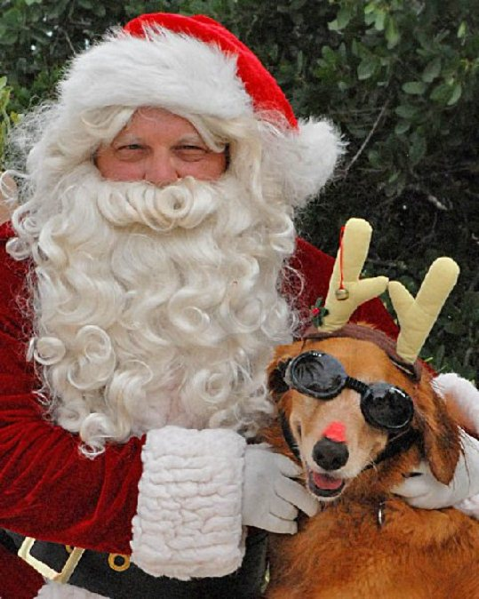 Thank you to everyone who helped make the First Big Pine Bark Park Christmas Beach Party an overwhelming success. We raised $2,800, putting us over the top for funds necessary to complete work on our doggie park in Big Pine Key. Sponsors included:  Marathon Vet Hospital, Parrotdise Bar & Grille, News Barometer, Pampered Pets, Whalton's Pet Store Salty Dog Photography (Barbara Drehrer)