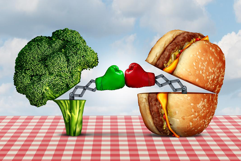 Image result for vegetables vs burger