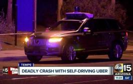 Uber halts self-driving program after pedestrian fatality