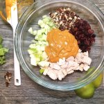Chipotle Curry Chicken Salad with apples, pecans, cranberries, celery and chicken