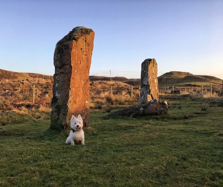 Gnoc Fada stones, Mull
