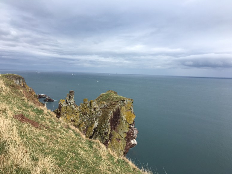St Abbs Head, Scooting Borders