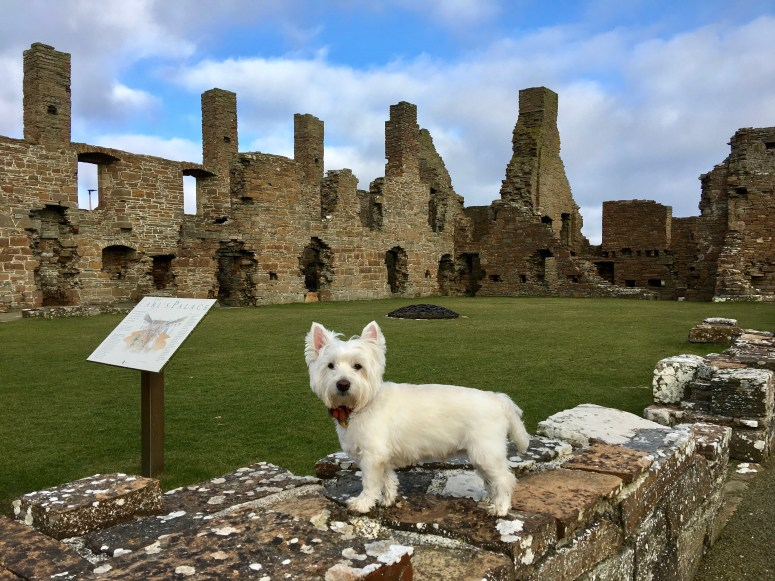 Earl's Palace, Orkney