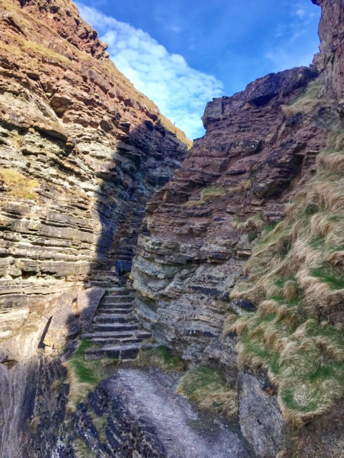 Brough of Deerness, Orkney