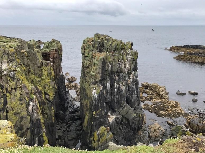 Isle of May