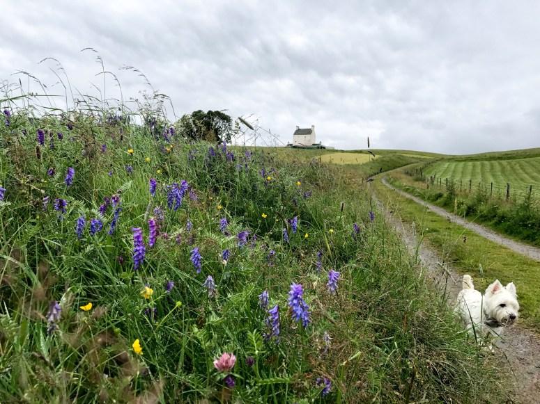 Corgarff - Scotland's Castle Trail