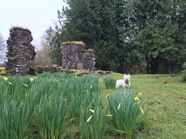 Saddell Abbey, Kintyre Peninsula
