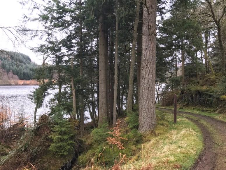 Loch Drunkie, Trossachs