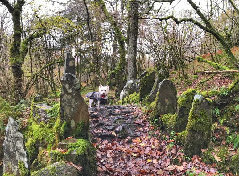 Fairy Bridge, Glen Creran