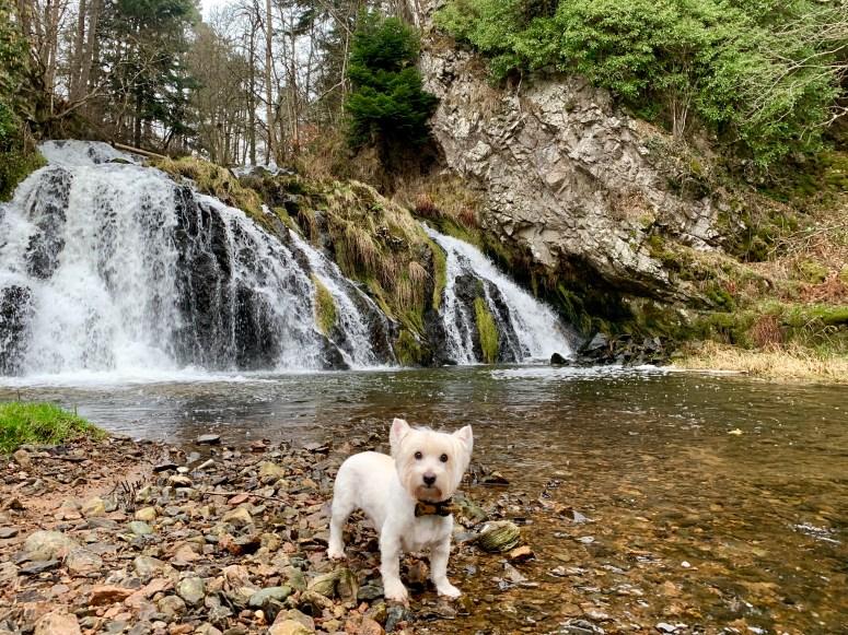 Dess Waterfall, Aberdeenshire