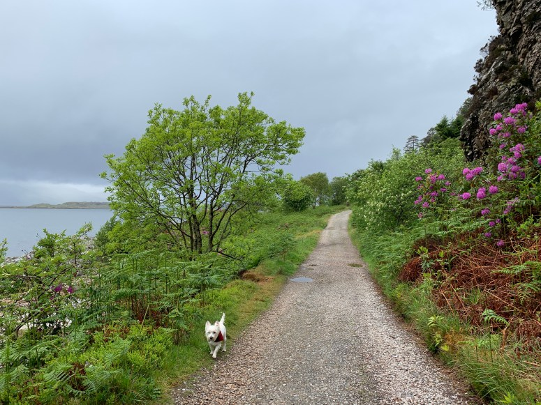 Clach Thoull Trail, Port Appin