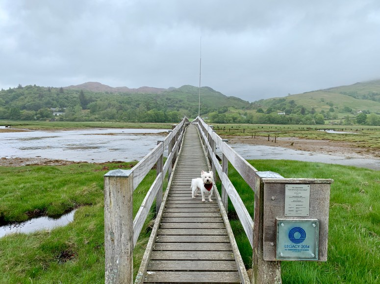 Jubilee Bridge Appin
