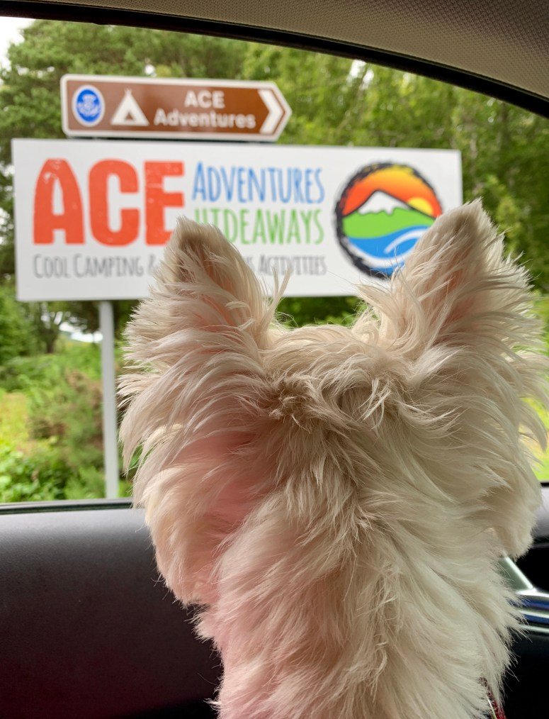 Ace Adventures & Hideaways
