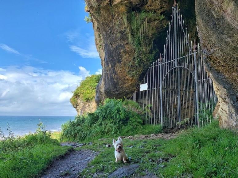 King's Cave, Arran