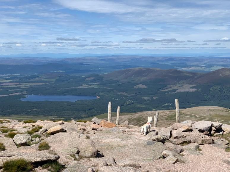 Cairn Gorm Munro