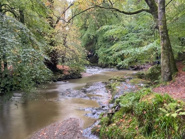 Ardgartan Lochside Trail