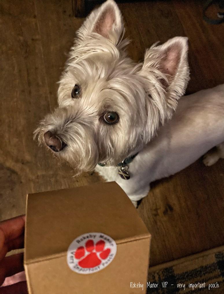 Dog friendly Highland hotels