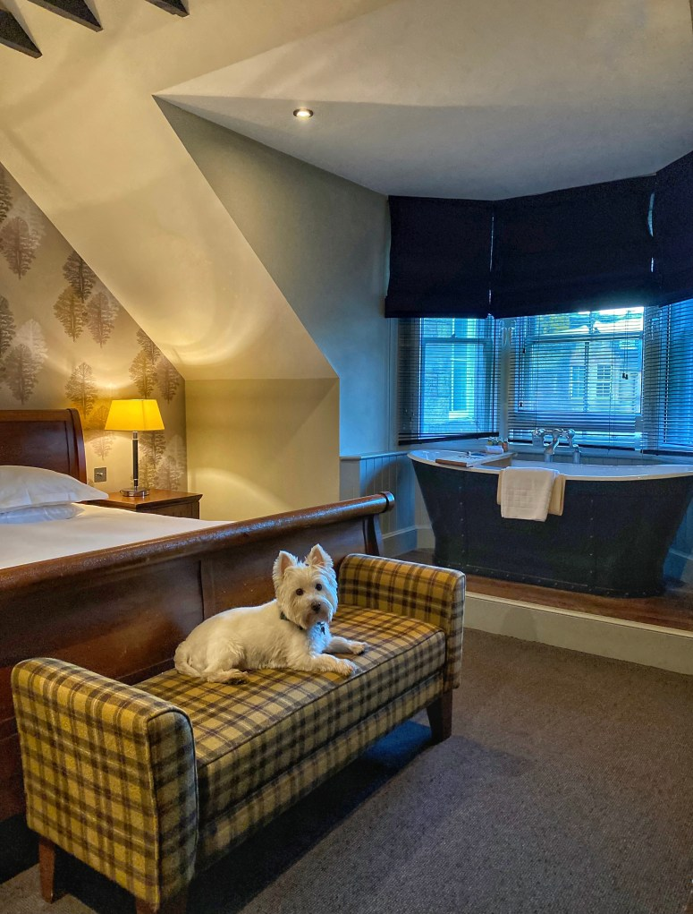 Pet friendly hotel Edinburgh