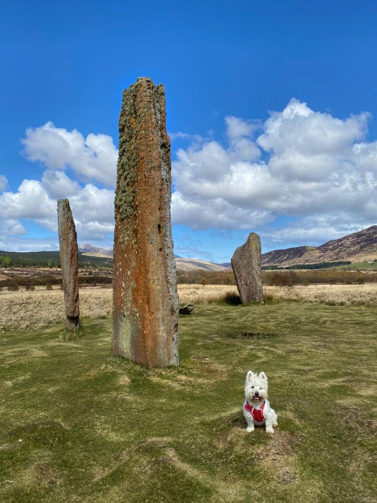 Stone circle, Isle of Arran