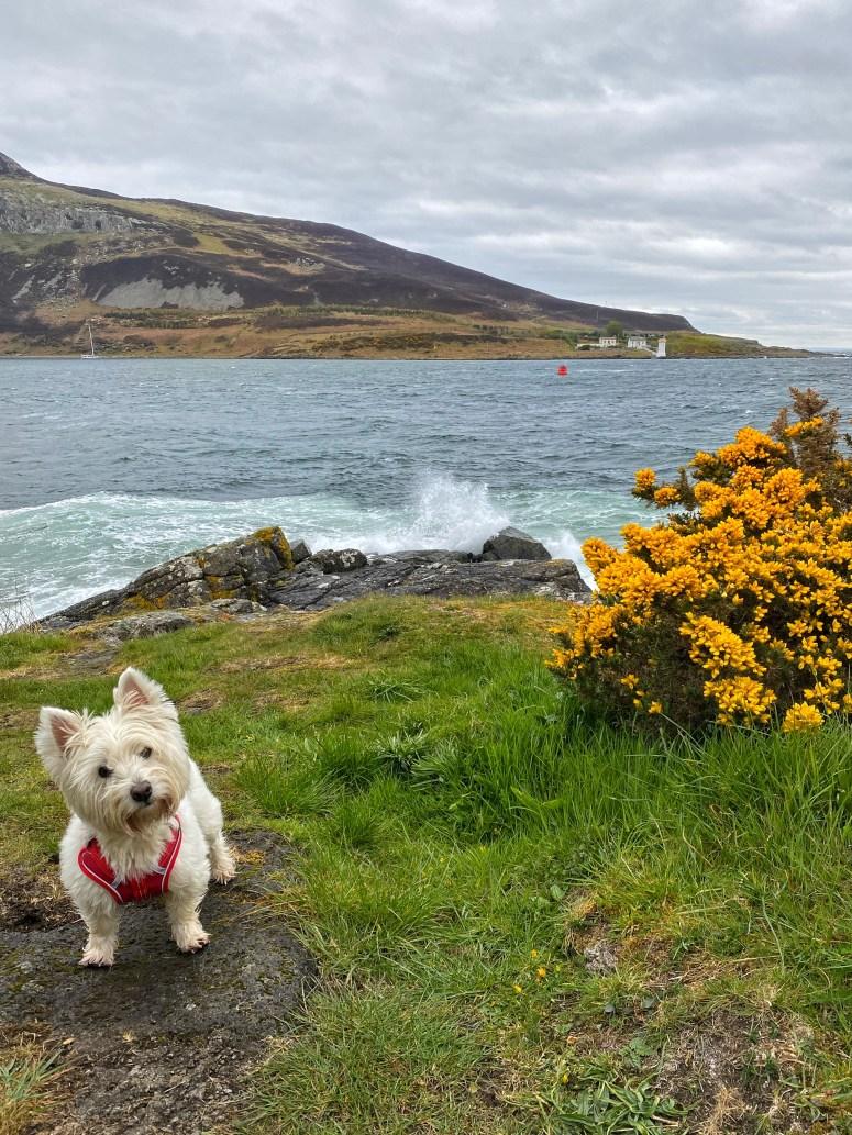 Kingscross Point, Isle of Arran