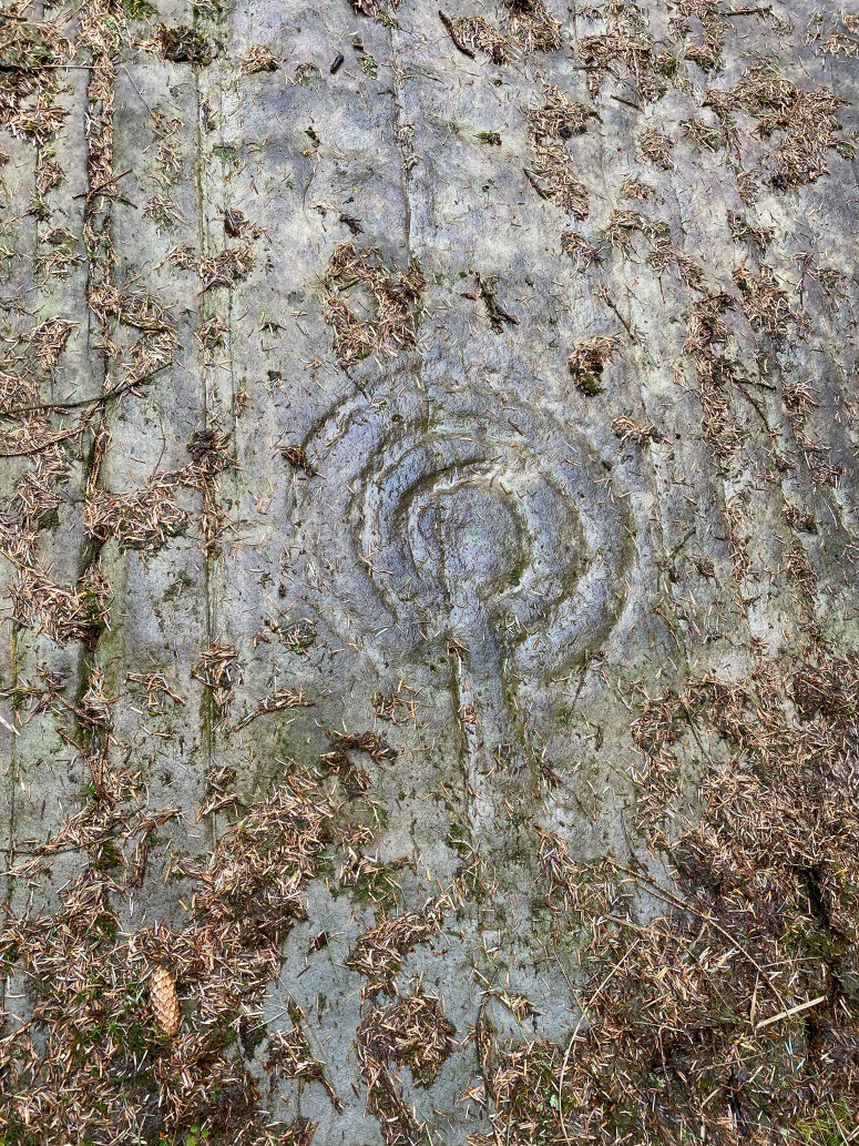 Stronach Wood cup and ring marked stones